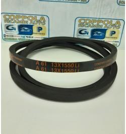 CINGHIA A61 13X1550