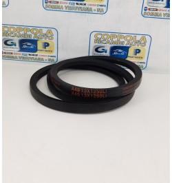CINGHIA A49 13X1250